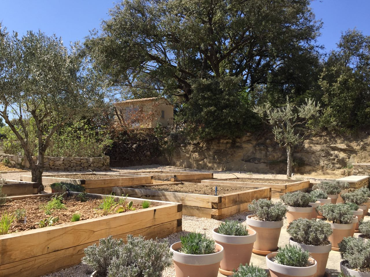 The garden project, kitchen garden