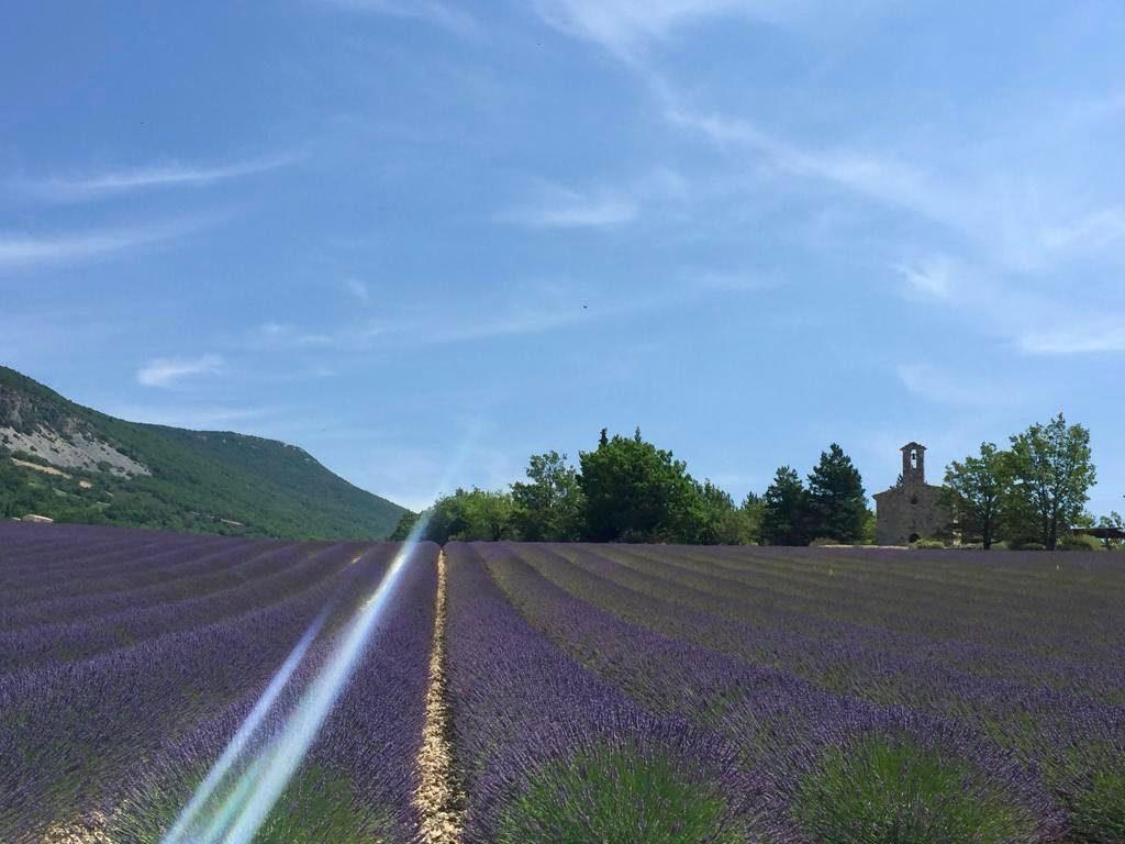 lavender Provence, Romanesque chapel