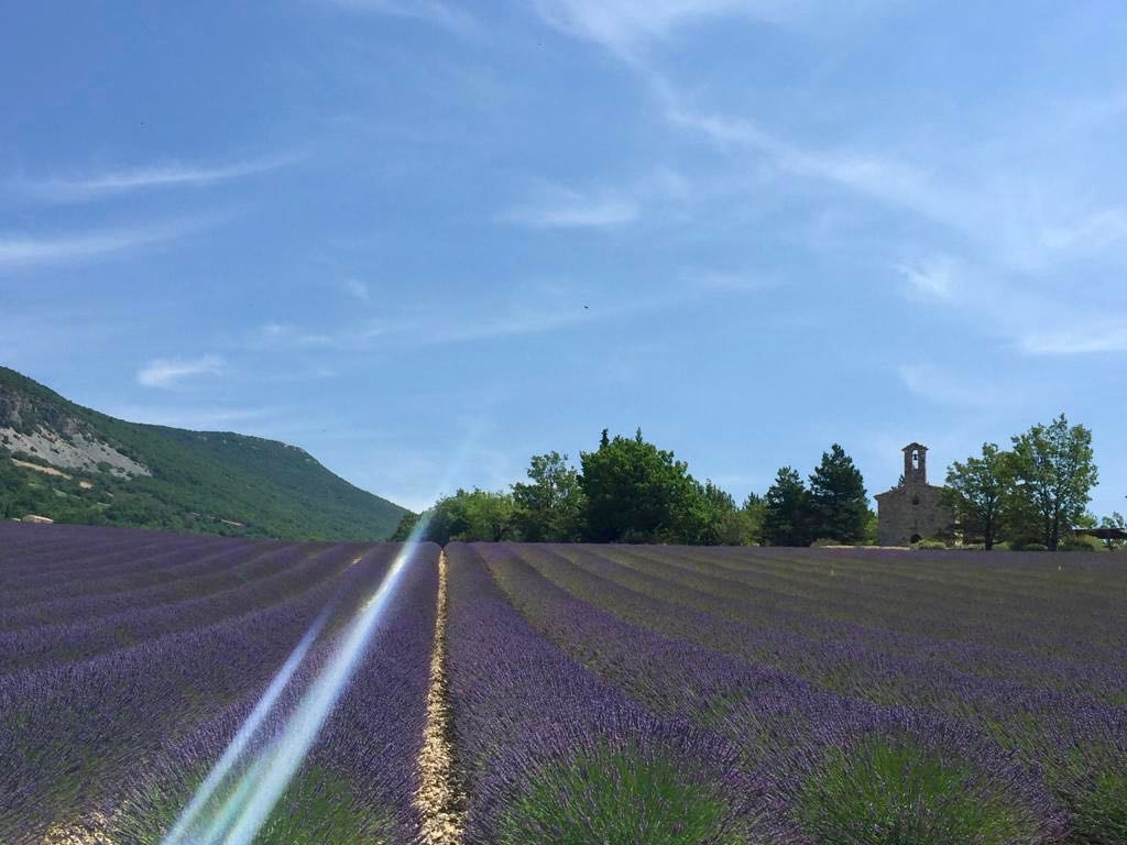 Baronnies, the hidden gem of Provence