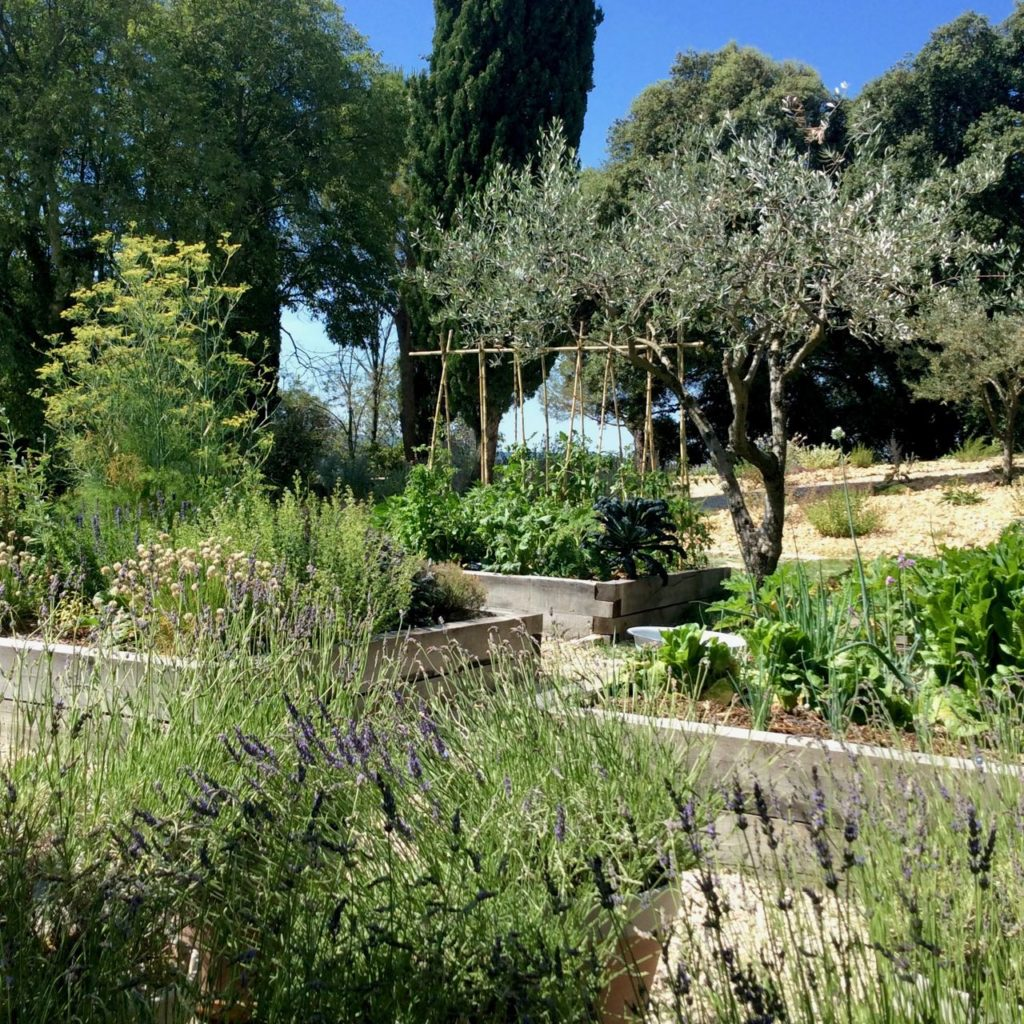 Potager, kitchen garden at La Baye des Anges