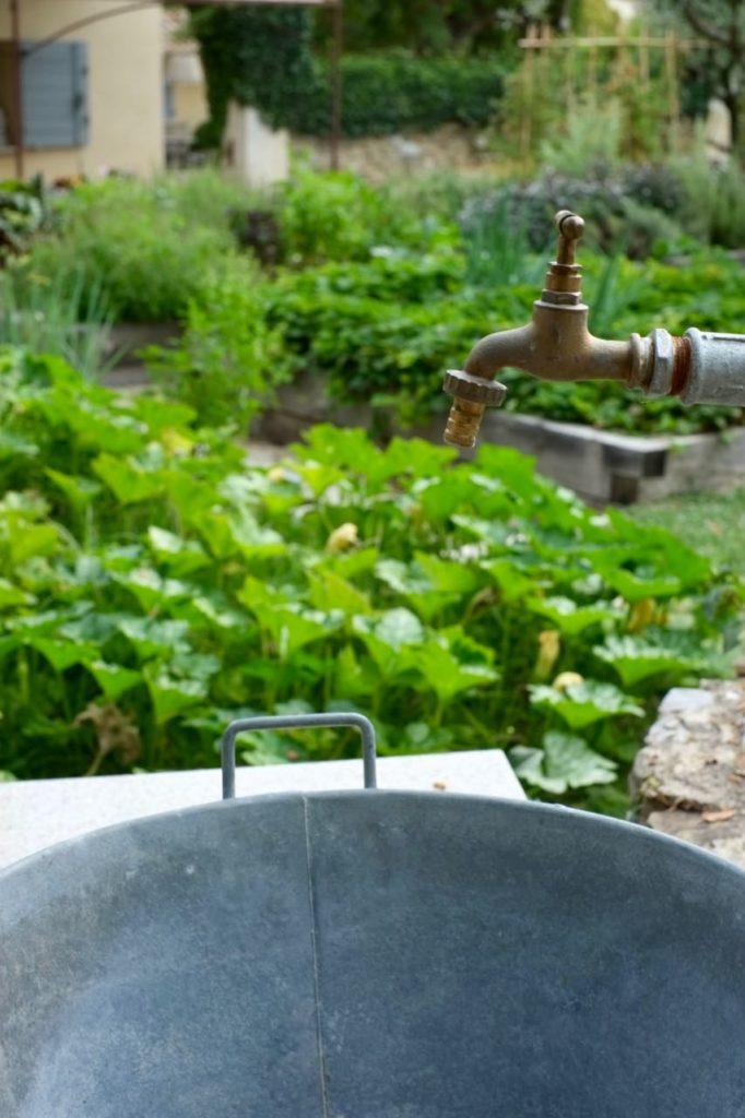 Kitchen garden at la Baye des Anges