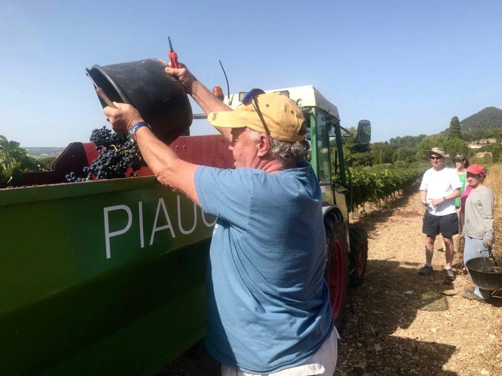 Harvest Piaugier