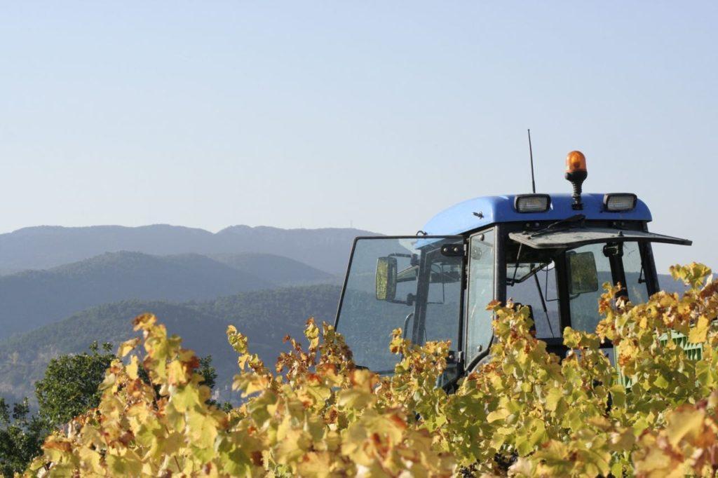 Harvest Mas Pouperas
