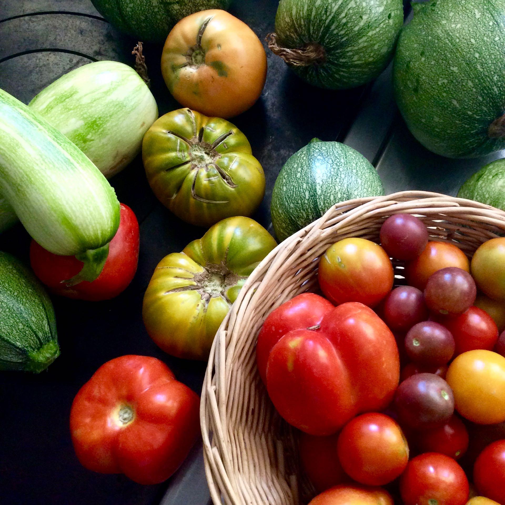 Vegetables from our kitchen garden